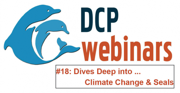 DCP Dives Deep: How seals deal with climate change impacts in the Antarctic